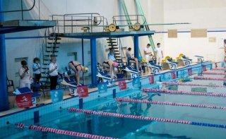 Каменчане завоевали 30 наград на чемпионате области по плаванию - ФОТО