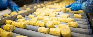 На Днепропетровщине будет большое продовольственное предприятие - ФОТО