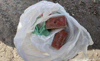 У ранее судимого жителя Каменского обнаружили две тротиловые шашки - ФОТО