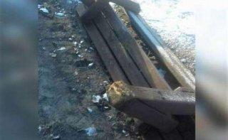 В Днепре вандалы изуродовали парк - ФОТО