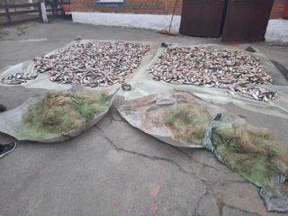 На Каменском водохранилище задержали браконьера - ФОТО