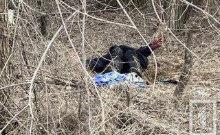 На Днепропетровщине в посадке нашли труп мужчины - ФОТО