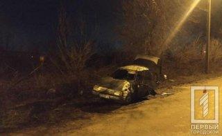 На Днепропетровщине пьяный водитель на ЗАЗ врезался в дерево - ФОТО