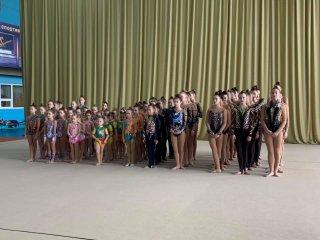 В Каменском стартовал Чемпионат области по гимнастике - ФОТО