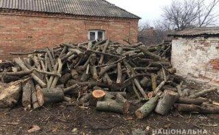 На Днепропетровщине задержали трех мужчин за незаконную вырубку леса - ФОТО