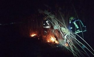 Масштабный пожар под Каменским: загорелось 3,5 гектара травы - ФОТО