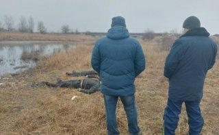 На Днепропетровщине в реке нашли тела двух мужчин, которые пропали 2 месяца назад - ФОТО