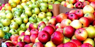 Вниманию каменчан: яблоки подорожают втрое - ФОТО