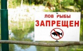 Вниманию рыбаков Каменского: с 1 апреля начинается нерест - ФОТО