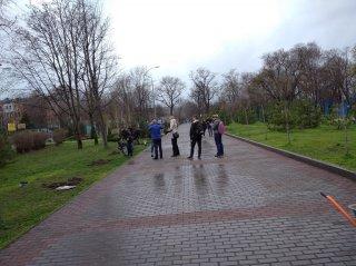 В Каменском появилась Аллея магнолий - ФОТО