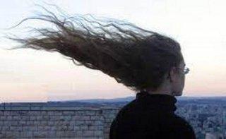 Жителей Днепропетровщины предупреждают о сильном ветре - ФОТО