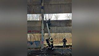 В Днепре девочка застряла на высоте 8 метров в заброшке - ФОТО